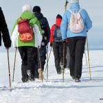 Ледниковый период-2, 27 марта.