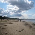 17 декабря (суббота), приглашаем в нордический поход по маршруту: Сестрорецк(Дубки)-Солнечное.