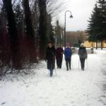 А по субботам для нордиков- снежок.