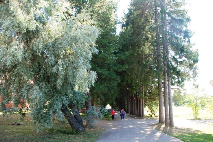 С 22 по 24 июня,приглашаем в любимую Финляндию насладиться природой, посетить Ново-Валаамский Спасо-Преображенский мужской монастырь и конечно потренироваться.
