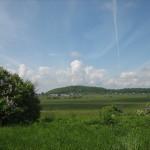 16 июня, приглашаем в поход от Можайской до Кирхгофа.