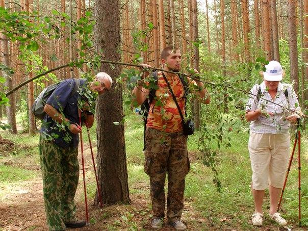 Выездное занятие по скандинавской ходьбе в Ярославле - наш дебют!