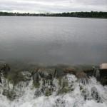 Выездная тренировка. От Дудергофского озера к горе Кирхгоф.