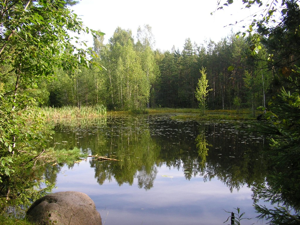 Зеленогорск приглашает на тренировку 25 августа.