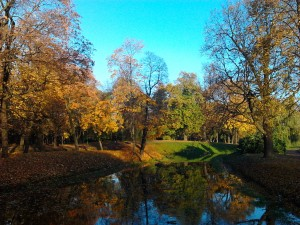 Приглашаем в четверг 29 ноября на бесплатный мастер-класс в Таврический сад