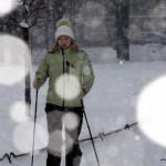 Мастер класс по финской ходьбе 4 декабря в Таврическом парке.