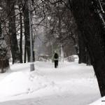 26 и 27 февраля-ОТМЕНА занятий  в Таврическом саду и Елагин остров!