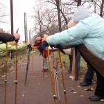 Палки для скандинавской ходьбы vs лыжные палки