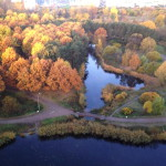 Приглашаю на мастер класс по скандинавской ходьбе 30.11.13 в парке Александрино, СПБ.