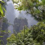 """Мы были первооткрывателями в """"джунглях Пандоры""""  – гора Аватар, юго-восток Китая"""