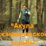 Открыта регистрация на традиционный (3-й) осенний слет – соревнования Акула скандинавской ходьбы