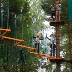 Скандинавская ходьба в  парке активного отдыха Гришкино, Тверь
