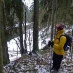 8 ноября выездная тренировка Сиверская-Белогорка-Вырица. 6 + 11км .