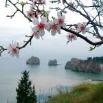 Приглашаем в весеннее путешествие в Крым с 23 по 28 марта 2015. Осталось 3 места в группе! Добро пожаловать!