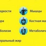 24 марта, дорогие Нордики, приглашаем на фитнес тестирование в Клуб! Санкт-Петербург.