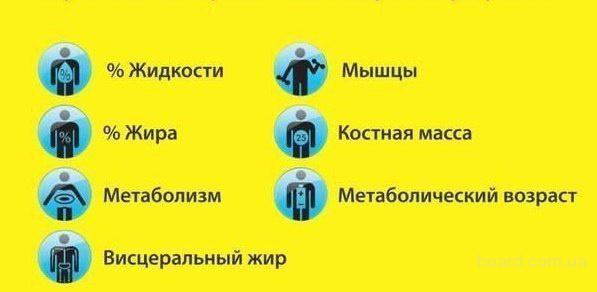 1-testirovanie-osnovnyih-obmennyih-protsessov