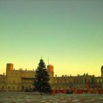 31 декабря – для всех Нордиков-предновогодняя тренировка в Гатчине!