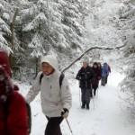 12.12-тренировка по маршруту:Токсово-Сярьги-каньон Охты-Кузьмолово.