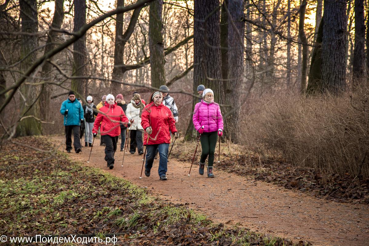 Санкт Петербург: Семинар ONWF Инструктор скандинавской ходьбы