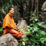 Монахи тратят на ходьбу много часов, чтобы развить сосредоточение.