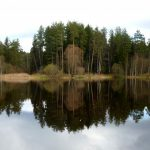 29.04 выездная тренировка по маршруту Осельки-Кавголовское озеро-Токсово. От 12км.