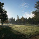 9 августа, приглашаем на бесплатный мастер-класс по скандинавской ходьбе в Пискаревском парке!