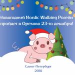 Nordic Walking Новогодний Рогейн 23/12/2018 – списки Участников и распределение по Командам