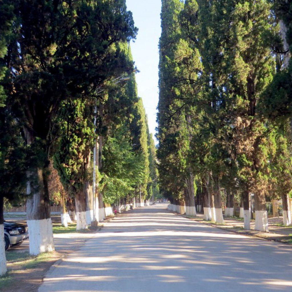 Группа заполнена. Мест нет.  Встречаем весну в Абхазии! 30 марта -- 5 апреля 2021