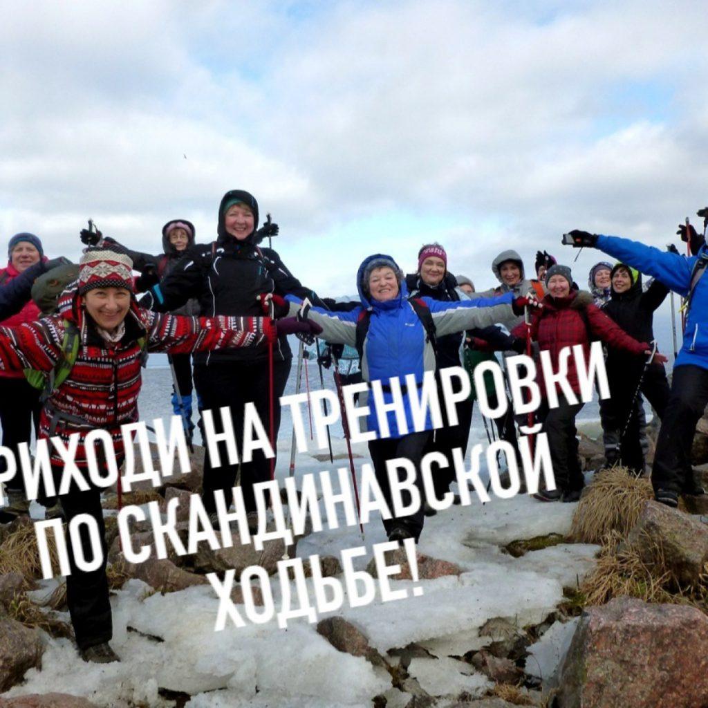 22 февраля, занятие для Новичков по технике скандинавской ходьбы на Елагином ЦПКиО.